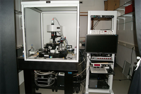 Confocal 2-Photon microscope Femtonics