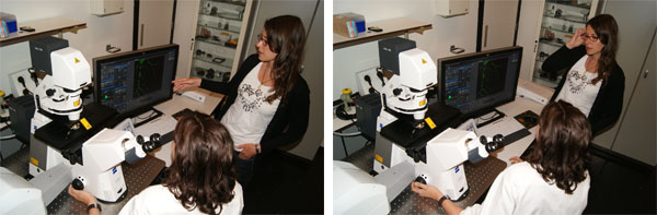 Confocal Laser Scanning microscope Carl Zeiss LSM700 2