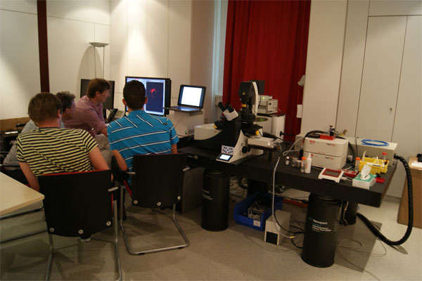 Demonstration of the confocal microscope Leica TCS SP8 1