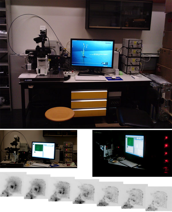 Testing of the TIRF microscope Olympus IX81