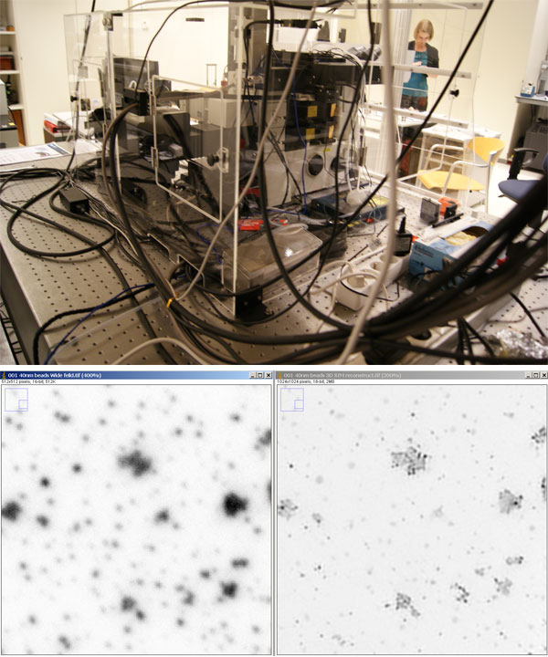 Testing of the super-resolution microscope Nikon N-SIM