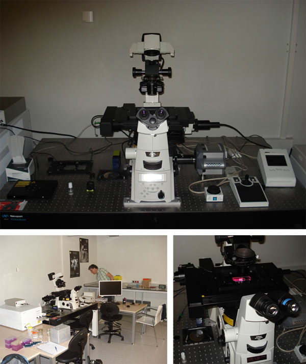 Testing of the super-resolution microscope Nikon N-STORM