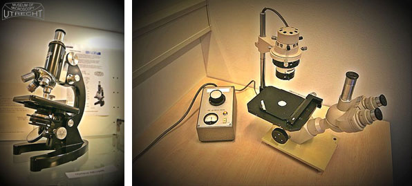 Utrecht Museum of Microscopy - page 5 image 2