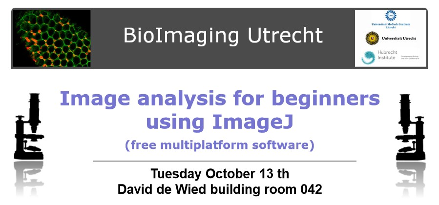 how to use imagej software