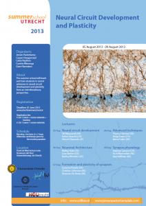 summerschool_2013_neural_circuit_ development