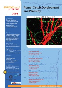 summerschool_2014_neural_circuit_development